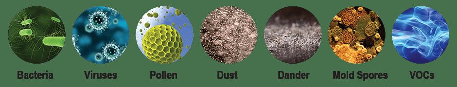 Reduces bacteria, viruses, pollen, dust, dander, mold spores, and VOCs.